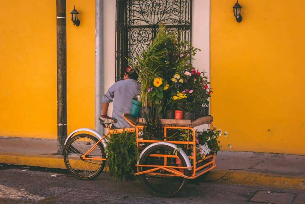 Safest Cities in Mexico